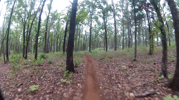 Most of the 2nd lap was a solo ride in the forest